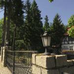 niska latarnia ogrodowa parkowa na murku